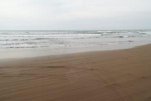千里浜海岸なぎさドライブ